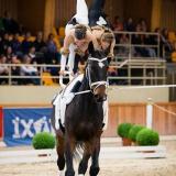 portfolio-equine-107