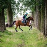 portfolio-equine-140
