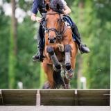 portfolio-equine-141