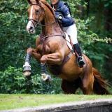 portfolio-equine-143