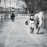 portfolio-equine-15-10