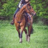 portfolio-equine-15-12