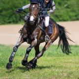 portfolio-equine-15-15