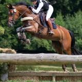 portfolio-equine-15-23