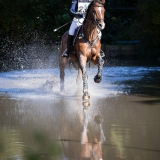 portfolio-equine-15-36