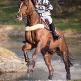 portfolio-equine-15-4