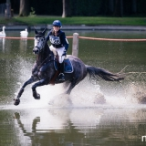portfolio-equine-150