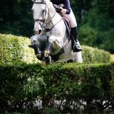 portfolio-equine-151
