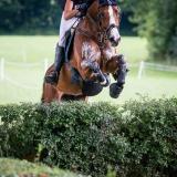 portfolio-equine-152