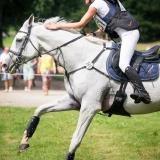 portfolio-equine-153
