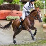 portfolio-equine-166