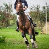 portfolio-equine-171