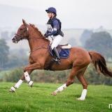 portfolio-equine-173