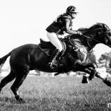 portfolio-equine-178