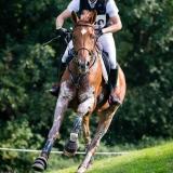 portfolio-equine-180
