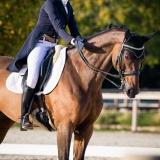 portfolio-equine-203