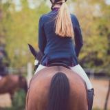 portfolio-equine-206