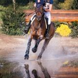 portfolio-equine-211