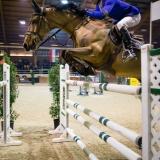 portfolio-equine-213