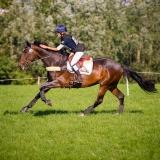 portfolio-equine-4