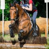 portfolio-equine-96
