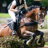 portfolio-equine-98