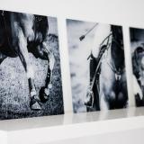 prints-24