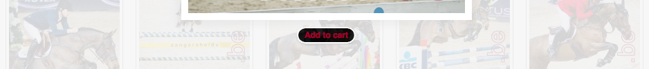 add-to-cart-nr